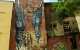 roa | eltono | bird | zaragoza | spain (21 votes)