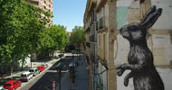 roa | rabbit | zaragoza | spain (22 votes)