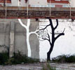 pablo-s-herrero | rope | tree | spain (21 votes)