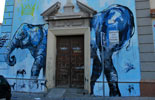 jaz | laguna | blue | elephant | madrid | spain (24 votes)
