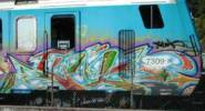unknown | train-bordeaux (2 votes)
