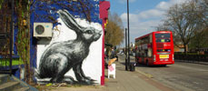 roa | rabbit | london | ukingdom (12 votes)