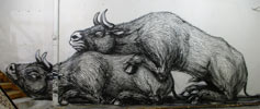 roa | pure-evil-gallery | london | ukingdom (21 votes)