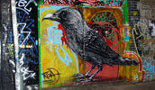 roa | bird | london | ukingdom (19 votes)