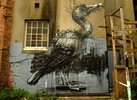 roa | brighton | bird | ukingdom (14 votes)