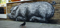 roa | pig | london | ukingdom (18 votes)