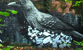 roa | toaster | bird | london | ukingdom (17 votes)