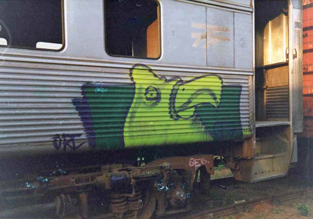 geg | bird | train | brazil | various