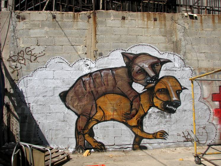 klone | dog | tel-aviv | various