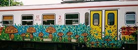snof | mushroom | train | slovenia | balkans (34 votes)